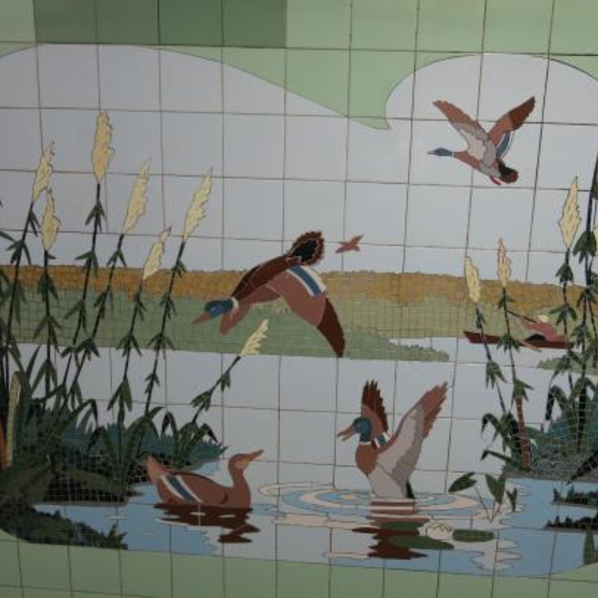Выставка «Природа Донского края. Взгляд из скрадка»